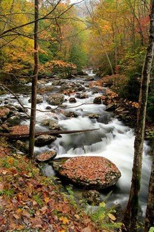 phoca_thumb_l_smoky-creek-in-fall.jpg