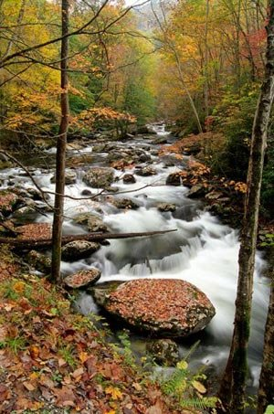 phoca_thumb_l_smoky-creek-in-fall.jpg