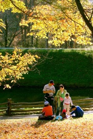 phoca_thumb_l_Autumn-By-the-Pond.jpg