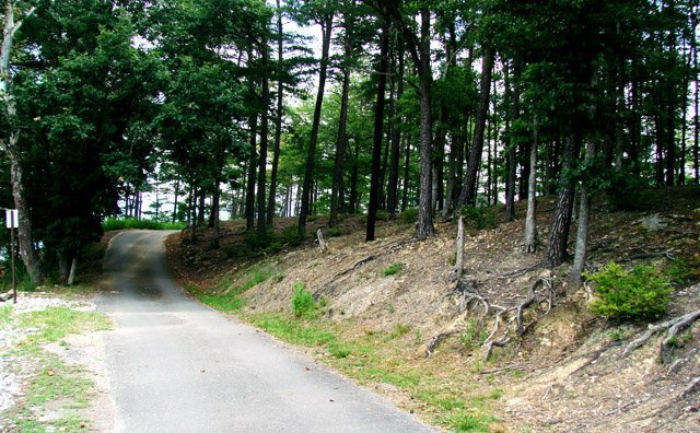 phoca_thumb_l_Carvins-Cove-Trail.JPG