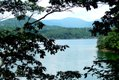 phoca_thumb_l_Carvins-Cove-View-From-Tree.JPG