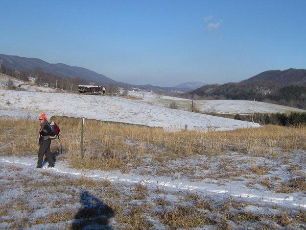 Along the Appalachian Trail just south of Va. 785 crossing