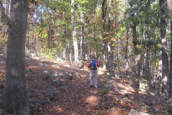 Grassy Hill Natural Area Preserve