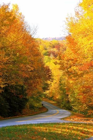 Blue-Ridge-Parkway-color-(9)_MG_1780-[Desktop-Resolution].jpg