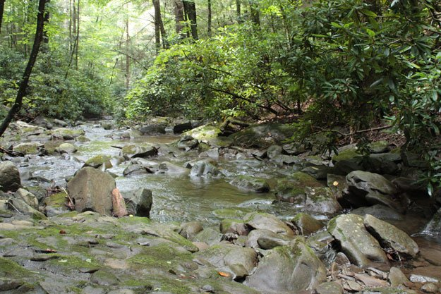 Smokies Creek