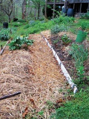 Beau Mulched Path