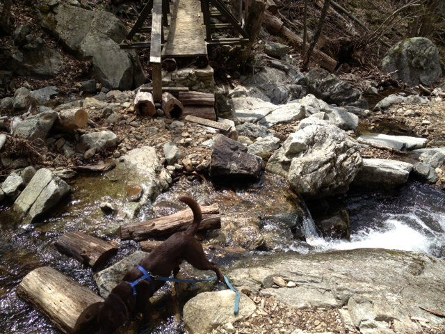 Washed Out Bridge