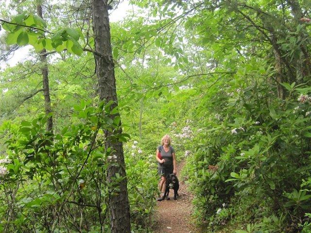Kurt's Hikes: June 1, 2013