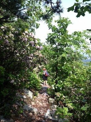 Kurt's Hikes: June 9 & 14