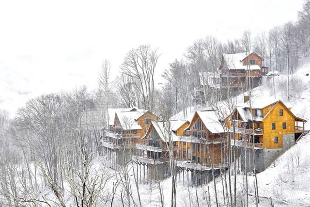 Scenic Wolf Resort 1