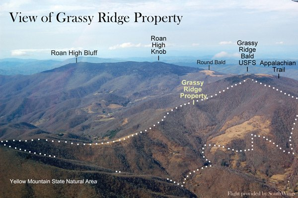 Grassy Ridge Property