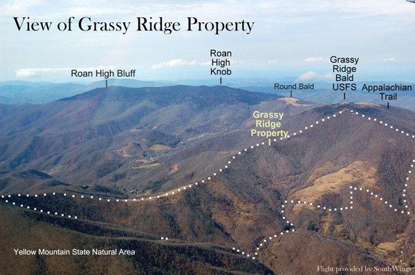 Grassy Ridge Property