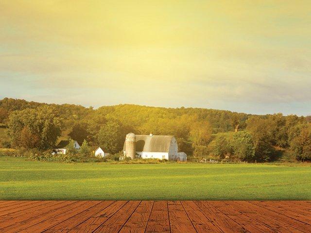 Farm_Large.jpg