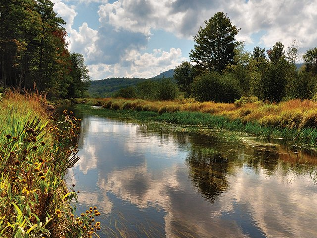 Along the Blackwater River Trail