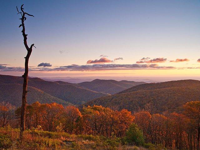 Thorofare-Mountain-Overlook-(9890).jpg