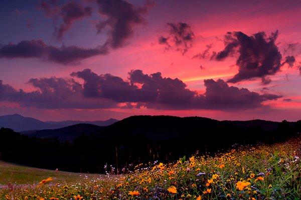 Summer-Colors.jpg