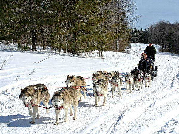 Huskies on the march