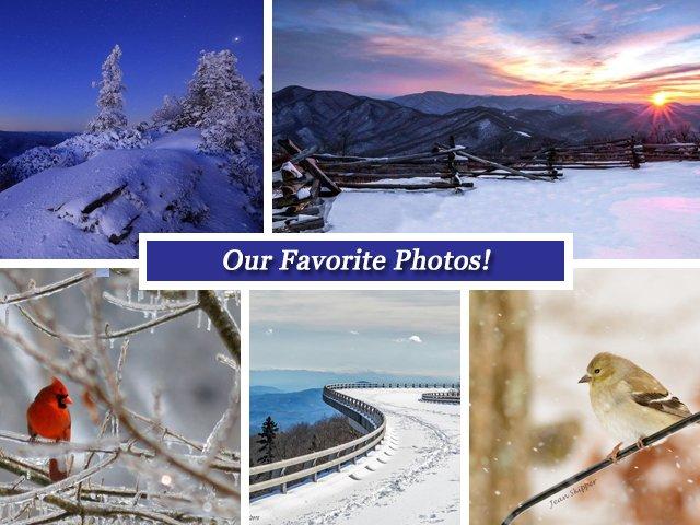 BRC-Fbook-Photos-Template.jpg