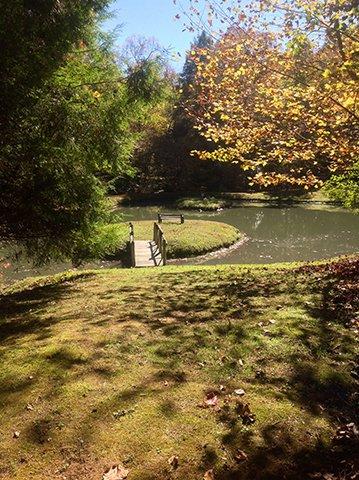Cavender-Creek-Cabins-pond-fall.jpg