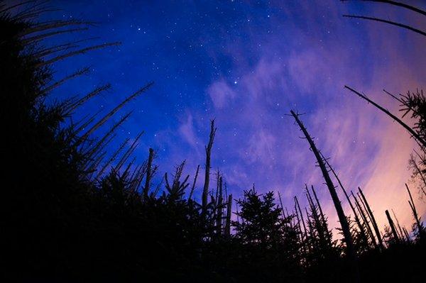 twilight_stars_smokies_771453.jpg