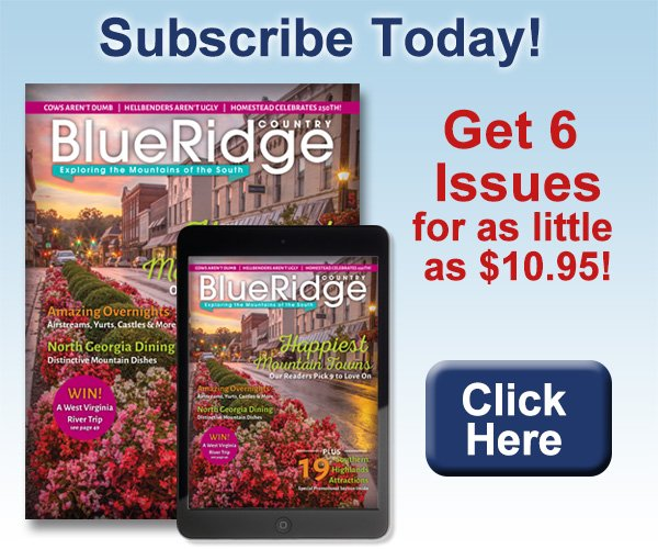 Subscribe today for as little as $10.95!