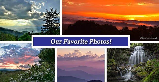 fb collage june 3.jpg