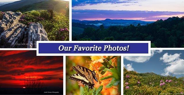 Collage FB june17.jpg