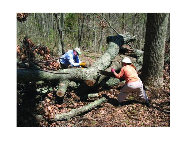 national park service volunteer application