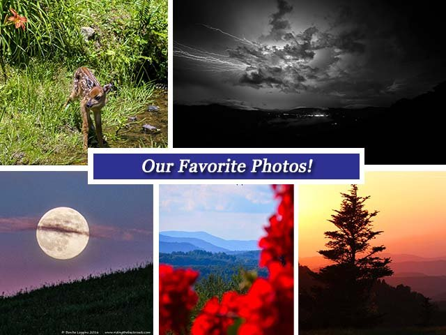 collageJune24.jpg