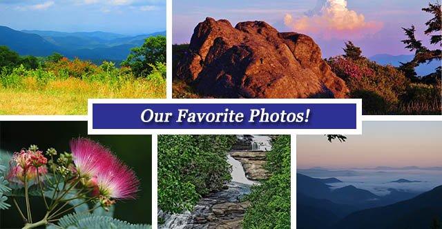 Collage July 1 FB.jpg