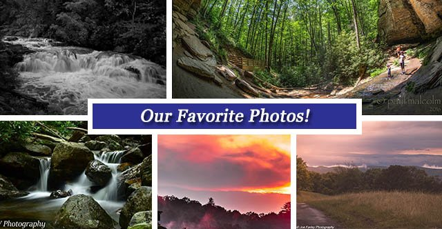 collage July 8 FB.jpg