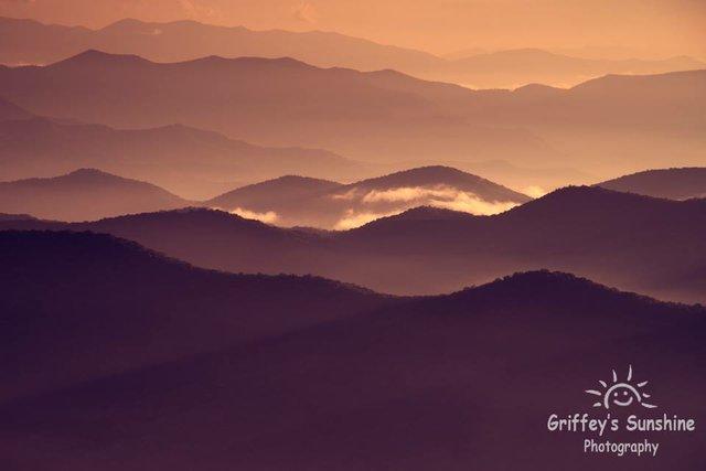 Griffey'sSunshinePhotography.jpg