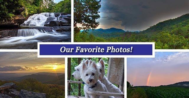 Collage FB July21.jpg