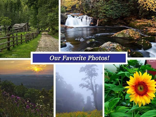 Collage august12.jpg