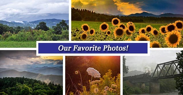 August 26 fb collage.jpg