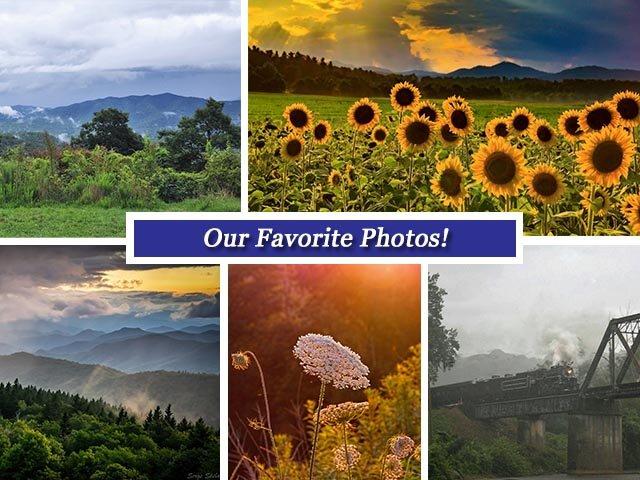 August26 collage.jpg