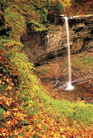 Autumn Drive: Monongahela National Forest