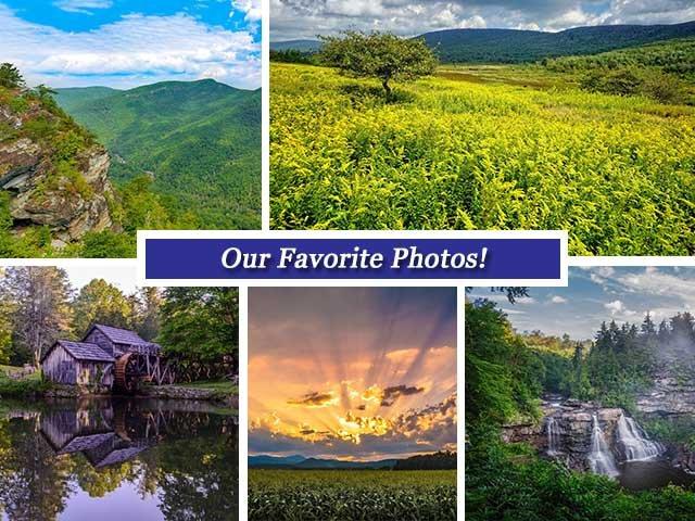 Collage Sept 16.jpg