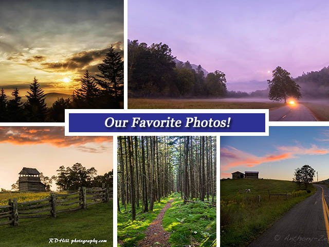 Sept 23 Collage.jpg