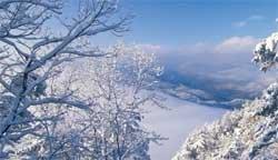 Snowy Cumberland Gap
