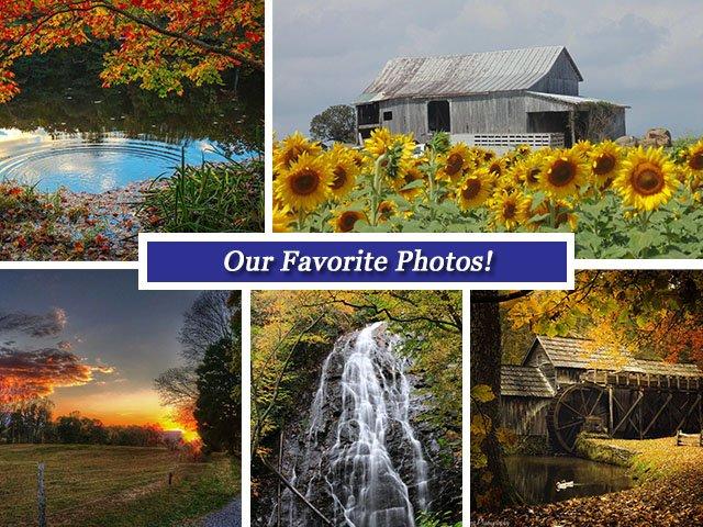 Oct 21 Collage.jpg