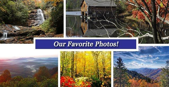 Oct 28 collage FB.jpg