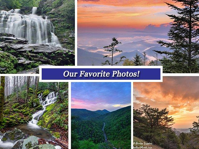 Our Favorite Facebook Photos: 3/24/17