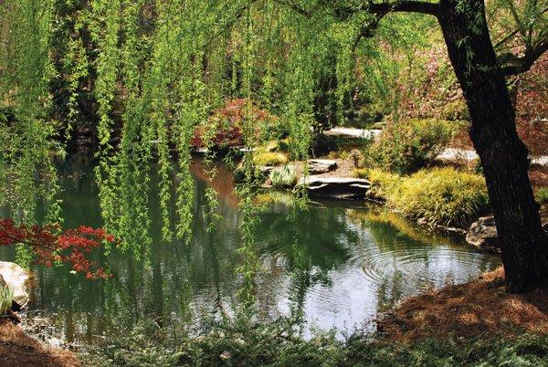 Gibbs-Garden.jpg