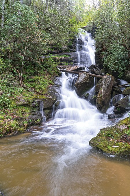 East-Fork-Headwaters_NC_(c)_Steve-Orr201705090_-(10).jpg