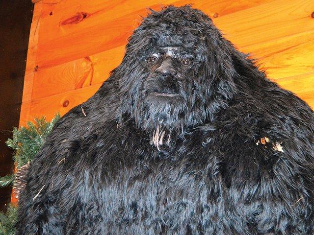 GA---CURIOS---bigfoot5c.jpg