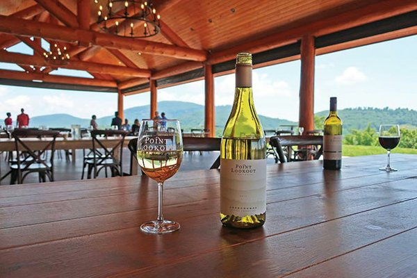 NC--Point-Lookout-Vineyards-281a.jpg