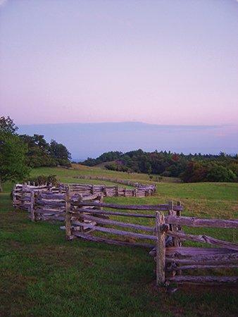 Old-fencing,-Doughton-Park-11.jpg