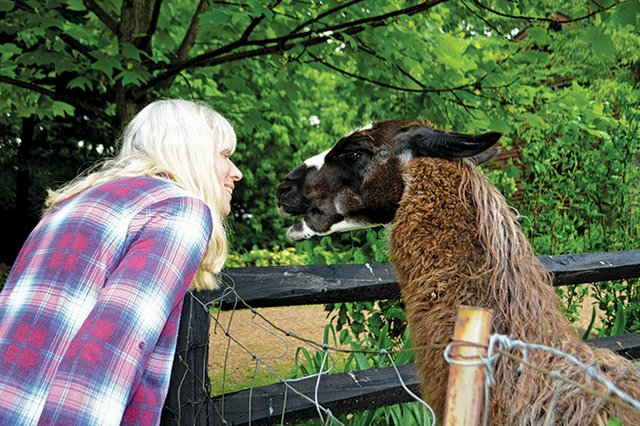 TN--story1a-Christian-the-llama-with-Diane-Vogt.jpg