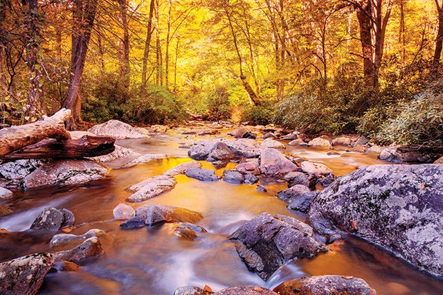 Blue-Ridge-Country-Great-Smokies-Golden-Stream.jpg
